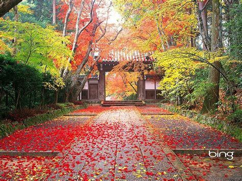 imagenes gratis japon oto 241 o en jap 243 n fondos de pantalla gratis