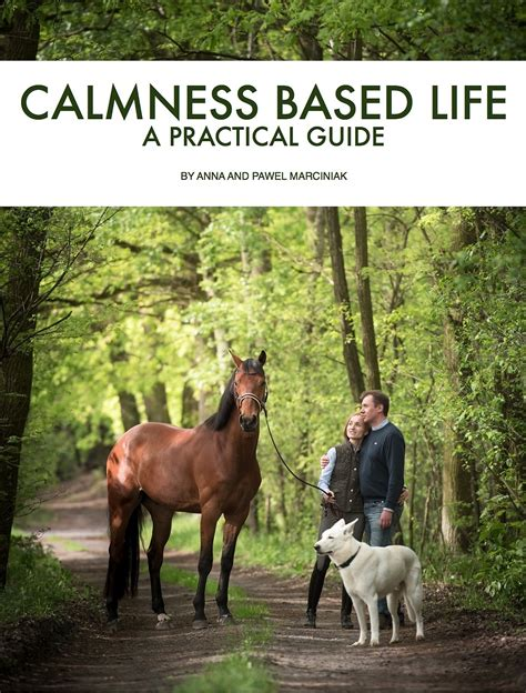 a practical guide to awareness discovering your true purpose books calmness based onehorselife