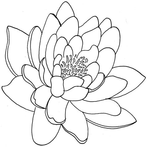 flower tattoo outline designs 33 lotus stencils designs