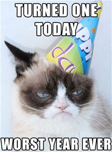 funniest birthday memes pei magazine