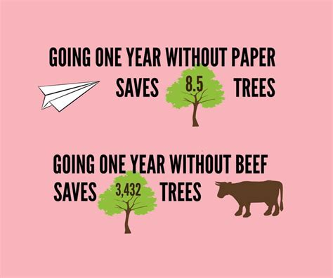 how to a 1 year environment quot one year without beef saves 3432 trees quot skeptics stack exchange