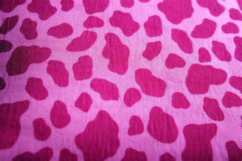 Safitri Pink pink safari background free stock photo domain
