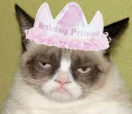 Princess Birthday Meme - i survived not all about cats