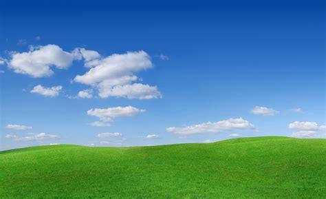 grass  sky wallpaper wallpapersafari