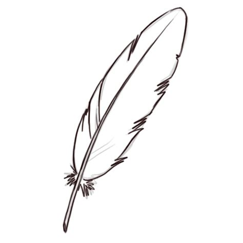 Step Outline by Turkey Feather Coloring Page Sketch Coloring Page