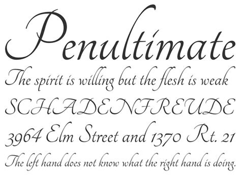 Best Resume Fonts Microsoft Word by 40 Beautiful New Calligraphy Fonts For Designers