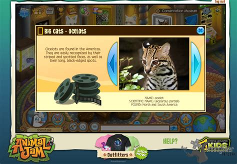 Imagenes Animal Jam | fotos de animal jam para pc animal jam fotos
