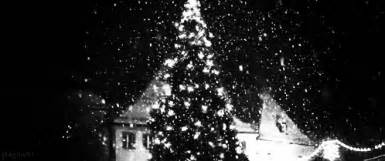 christmas tree gifs find share on giphy