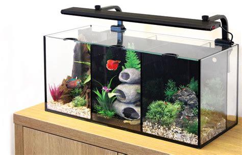animates betta design aquarium mono 11l betta aquariums php