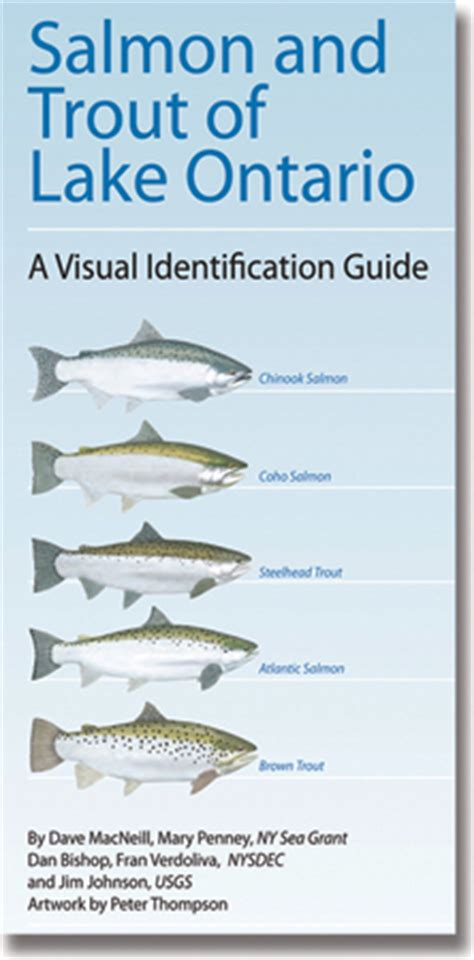 fishiq complete seasonal guide to lake fish books ny sea grant nysg publications new york coastlines