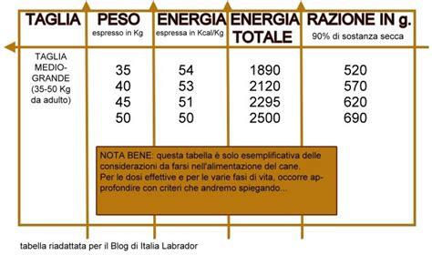tabella alimentare italia labrador tabella alimentare