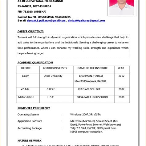 Professional Cv Format Word Document by Resume Format Word