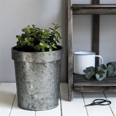 Planters Zinc by How To Style Zinc Planters Thrifty Home