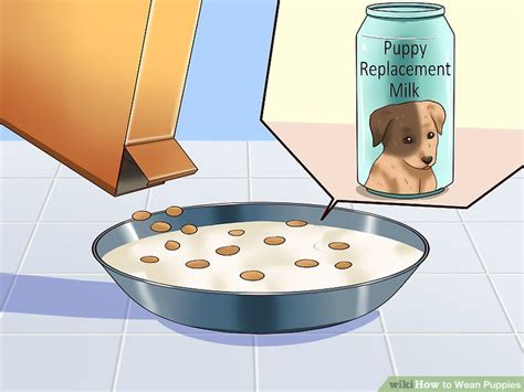 age to wean puppies how to wean puppies 10 steps with pictures wikihow