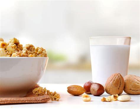intolleranza nichel alimenti intolleranze alimentari ed allergie il senza glutine