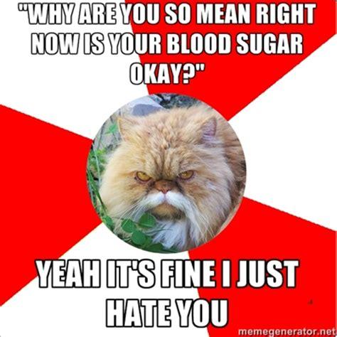 Diabetes Cat Meme - diabetic cat on tumblr