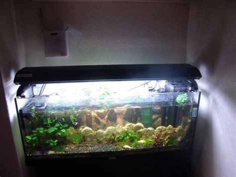 Fish Tank Light by T5 Aquarium Fish Tank Overhead Light 4 X 39w 100cm Cheap