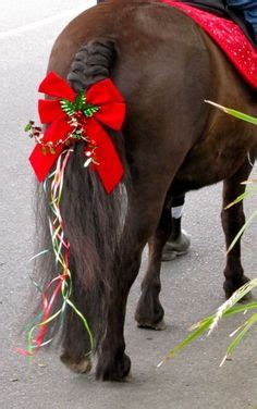 christmas decorating with horses 1000 images about costumes on costumes horses and costumes