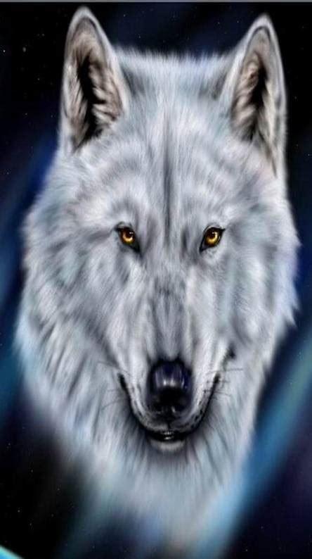 wolves ringtones  wallpapers   zedge