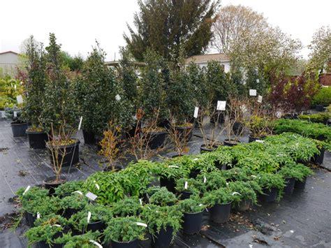 Garden Of Ephrata Pa Country Nursery Pool Road Ephrata Pa Trees Bushes