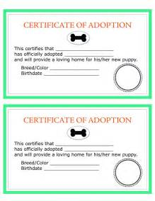 Mock Certificate Template by Image Gallery Mock Adoption Certificate