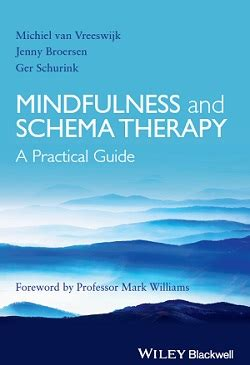 schema therapy in practice an introductory guide to the schema mode approach books 寘 綷 崧 綷 綷 綷 綷 2014