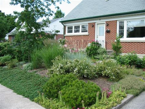 backyard grass alternatives lawn alternatives robin aggus natural landscaping