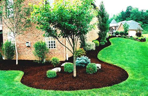 removed mulch added fresh landscape paper and edger from lowes topped with easy rocks