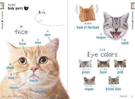 Buku Kucing The Complete Encyclopedia Of Cats Mudahnya Belajar Bahasa Jepang Dengan Buku Kucing Nekotan