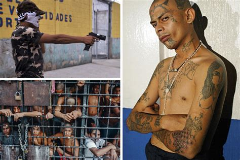 mara salvatrucha ms 13 el salvador gang aim to top global