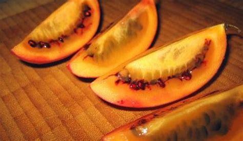 resep membuat jus terong belanda cur nanas resep jus sehat