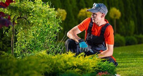 corso per giardiniere corso regionale giardiniere ifal