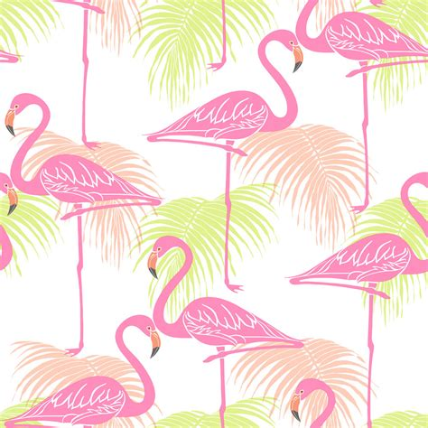 wallpaper direct flamingos flamingo wallpaper wallpaper images