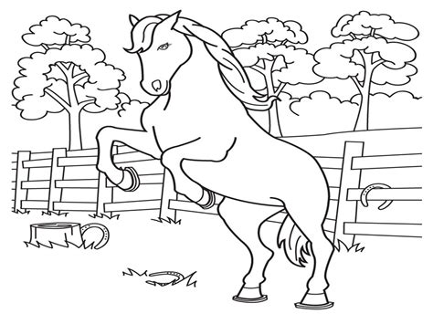 horse coloring page print out horse coloring pages to print out horse printable coloring