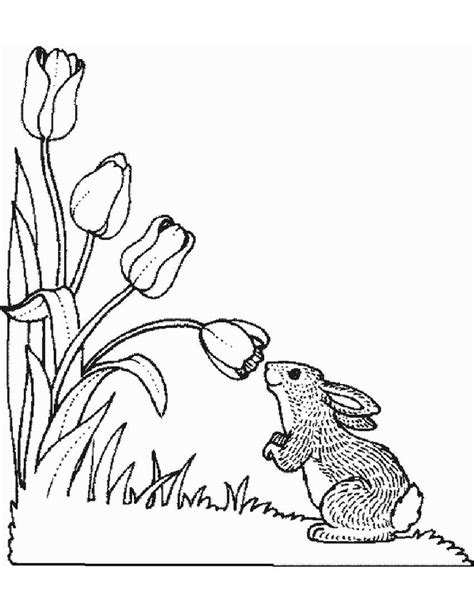 flowers  color coloring pages