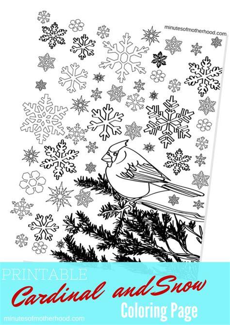 cardinal   snow  printable adult coloring page