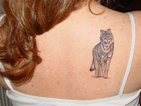 wolf tattoos for females awesome wolf designs for sheideas