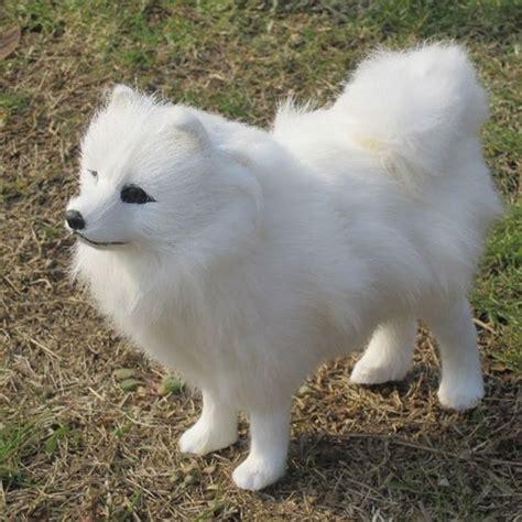 samoyed dogs 8 quot l white samoyed plush evtoys