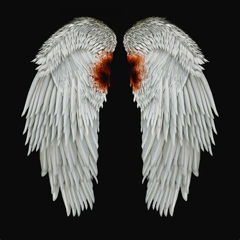 Wings I | wings