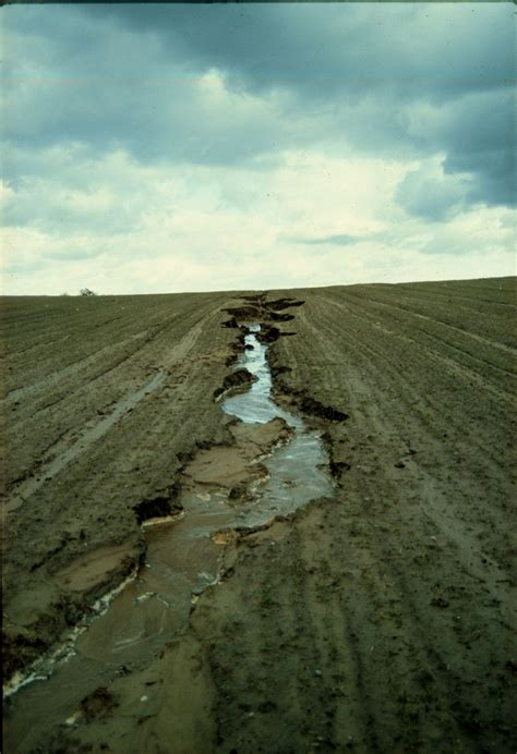 soil wikipedia soil erosion wikipedia