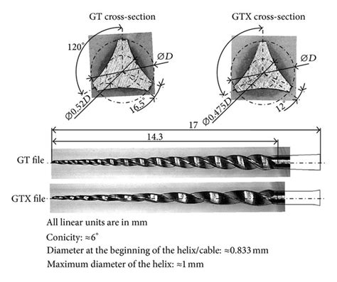 cross sectional profile cross sectional and longitudinal geometries of the gt and