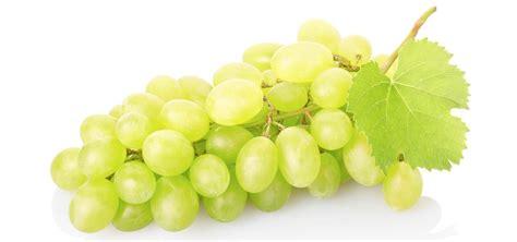 uva da tavola nomi uva senza semi 5 kg il contadino on line