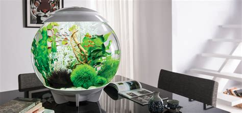 aquarium for home decoration aquarium home decor home accessories aquarium decoration