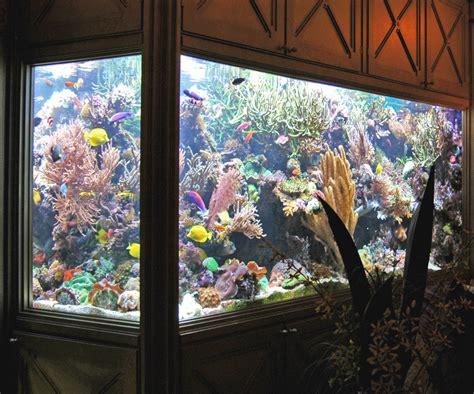 aquarium tafel maken vissen en vroeger