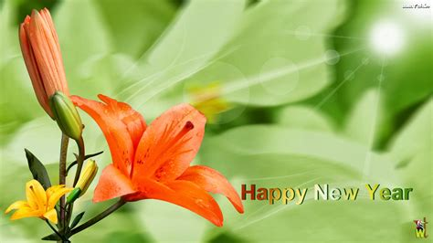 new year flower gifts flowers wishes wallpapers for new