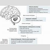 mitochondrial-disease