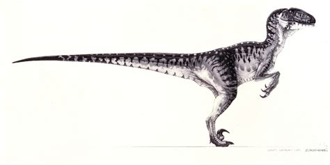The Lost World Jurassic Park by Jurassic Park Concept Art