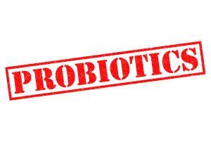212 supplement reviews best probiotic supplements top 11 supplement demand