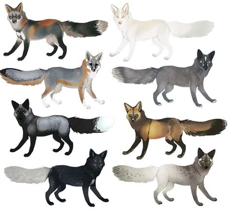 colors of foxes 266 best images about wolves on wolves tribal