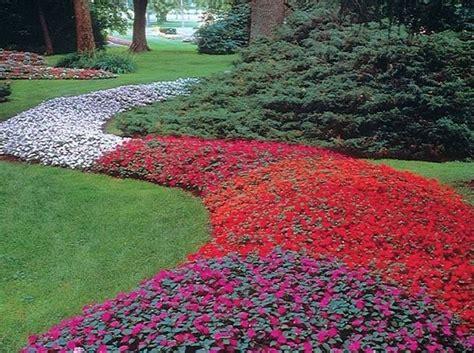 fiori di vetro coltivazione tipi di fiori fiori delle piante